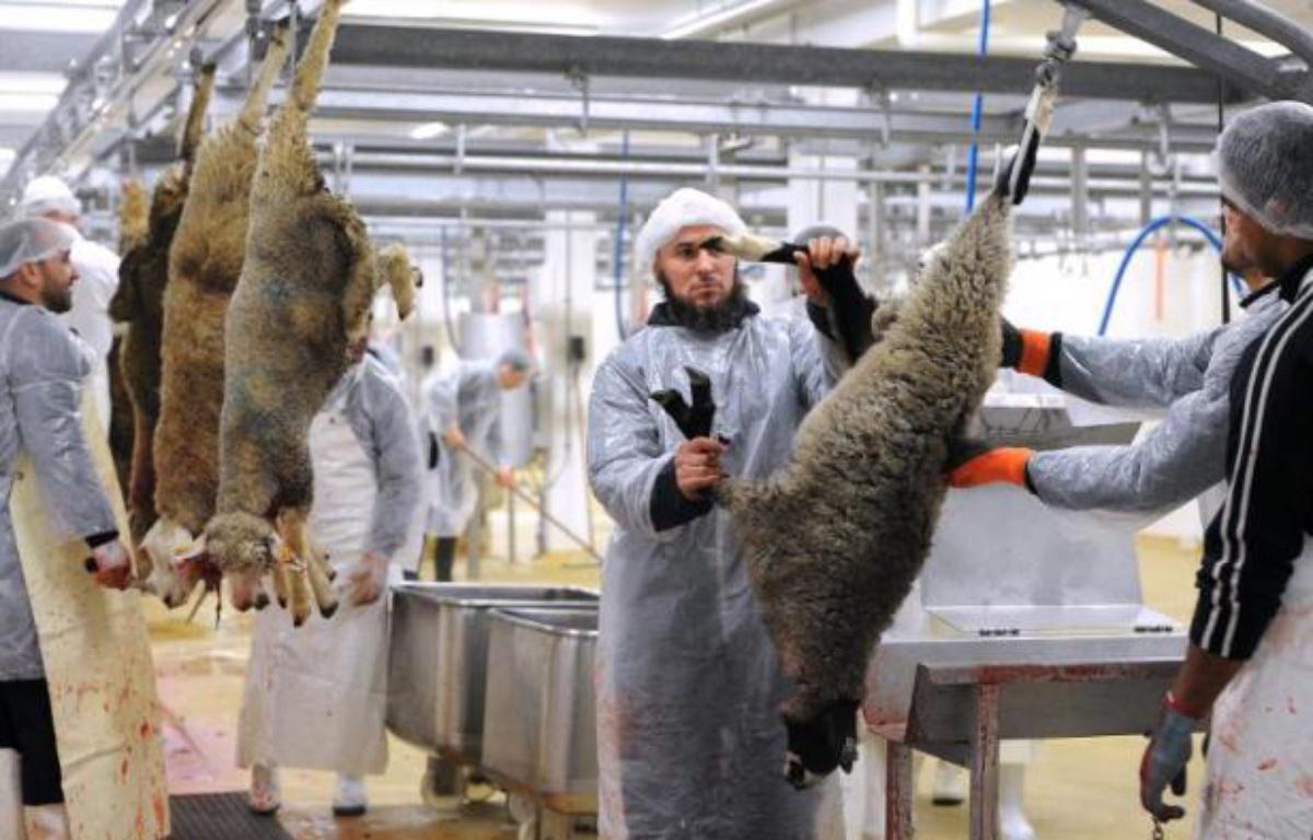 l'abattage religieux d'animaux